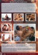 Latino Action 2: Sizzling Sensation DOWNLOAD - Back