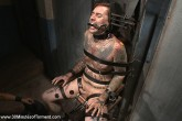 30 Minutes of Torment 23 DVD (S) - Gallery - 004