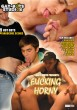 Fucking Horny (GBS) DVD - Front