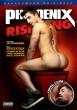 Phoenix Rising DVD - Front