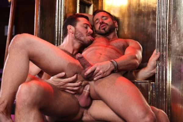 Sodomize That DOWNLOAD - Gallery - 013