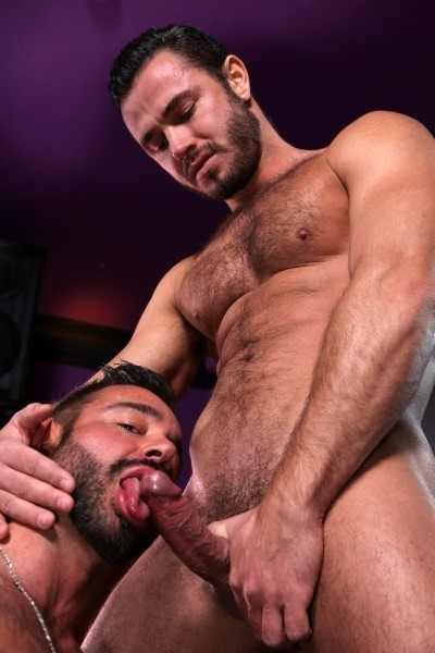 Sodomize That DOWNLOAD - Gallery - 015