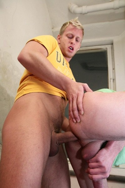 Fucked Innit! DOWNLOAD - Gallery - 012