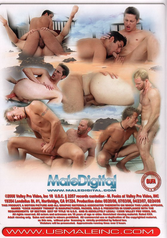 Cock Hungry Twinks DVD - Back