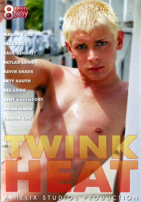 Twink Heat DVD - Front