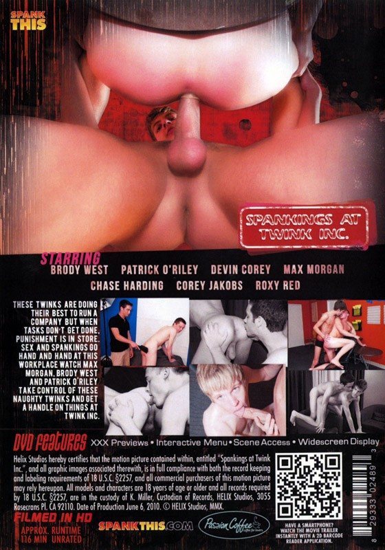 Spankings At Twink Inc. DVD - Back