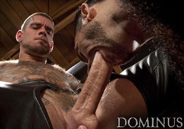 Dominus DVD - Gallery - 002