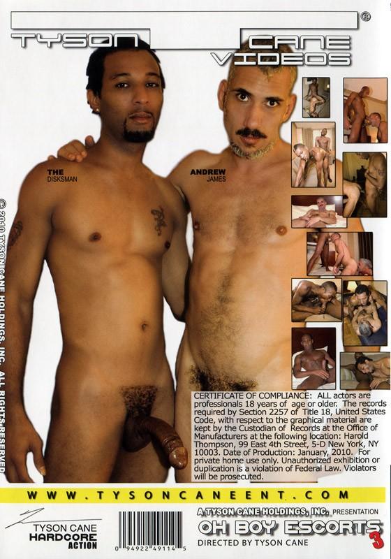 Oh Boy Escorts 3: Models Wanted DVD - Back