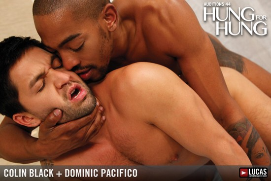Auditions 44: Hung For Hung DVD - Gallery - 004