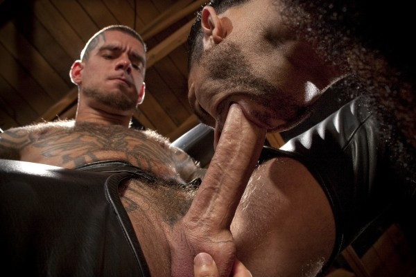 Leather Muscle DVD - Gallery - 021