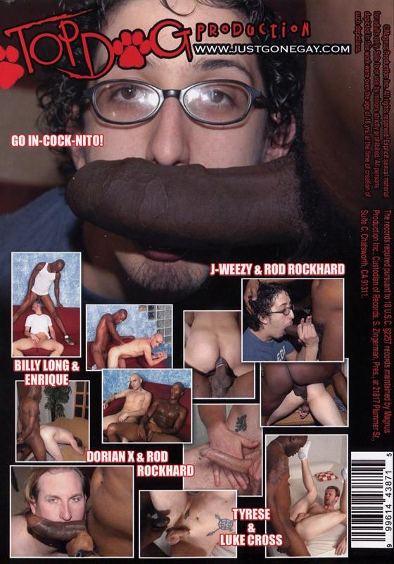 I Got Fucked By A Big Black Dick DVD - Back