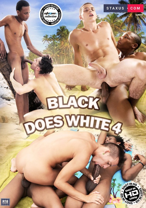 Black Does White 4 DVD - Front