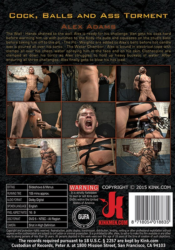 30 Minutes Of Torment 17 DVD (S) - Back