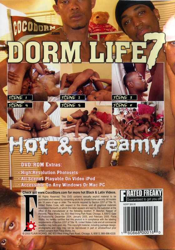 Dorm Life 7: Hot & Creamy DVD - Back