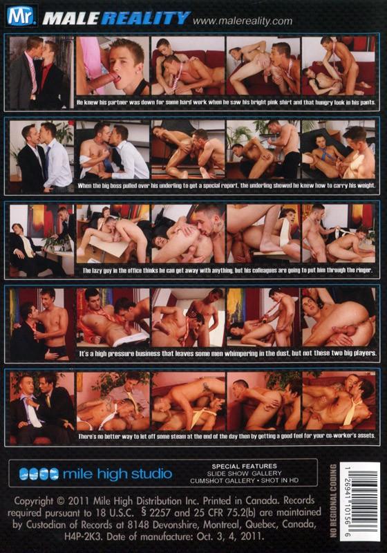 Office Twinks 5 DVD - Back