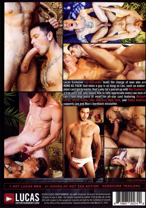 Hung as Fuck DVD - Back