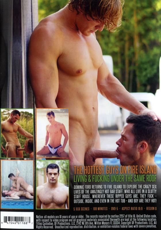 Fire Island Staff House Volume 2 DVD - Back