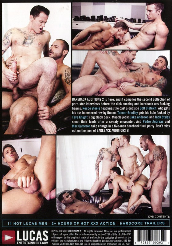 Bareback Auditions 2 (Lukas.E) DVD - Back