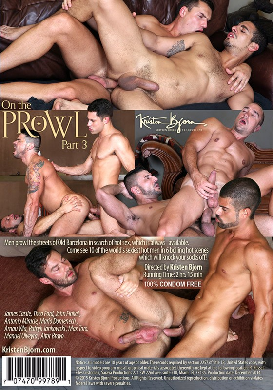 On The Prowl Part 3 DVD - Back