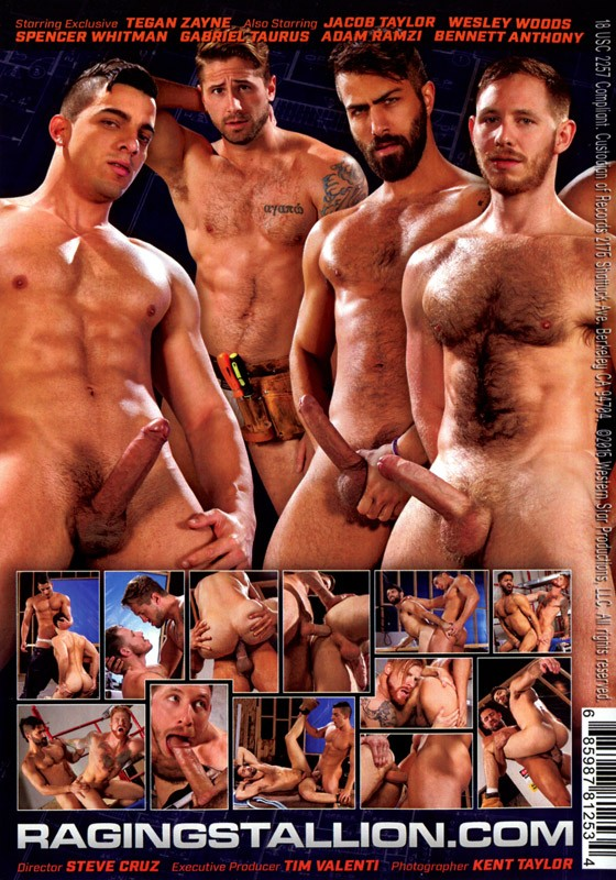 Erect This! DVD - Back