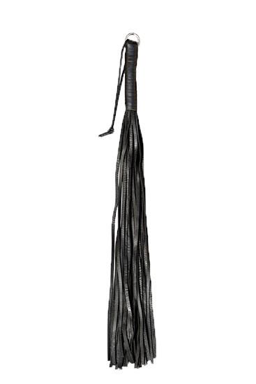 Kiotos Bruno - 24 Strings - Gallery - 001