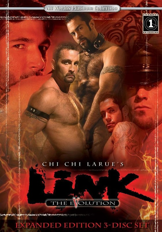 Link 5: The Evolution DVD - Front