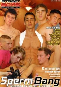 Sperm Bang DVD (S)
