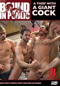 Bound In Public 69 DVD (S)