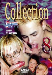 Game Boys Collection 8 - Nackte Tatsachen + Little Arrow DVD (NC)