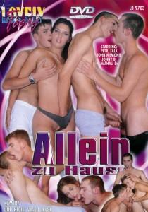 Allein Zu Hause DVD - Front