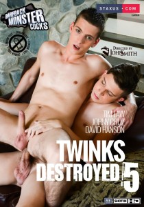 Twinks Destroyed 5 DVD - Front