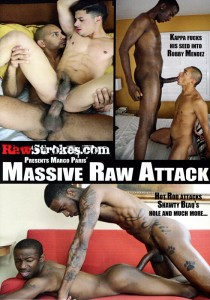 Massive Raw Attack DVD