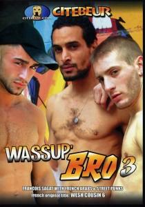 Wassup Bro 3 DVD (S)