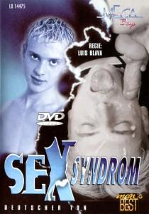 Sexsyndrom DVDR